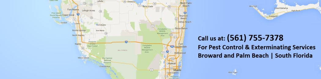 This is a Map showing the counties of Broward and Palm Beach which are the main Service area for Green Palm Pest Control