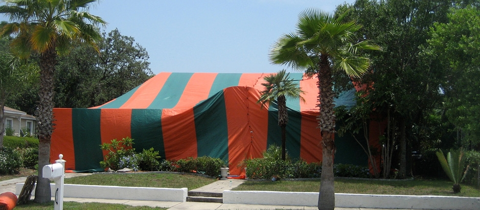 Structure with a tent for termite fumigation & Termite Tenting Cost - Get a Free a Inspection and Quote in Minutes