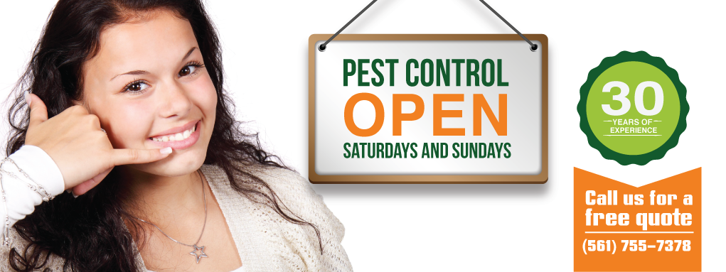 pest control open on saturdays and sundays