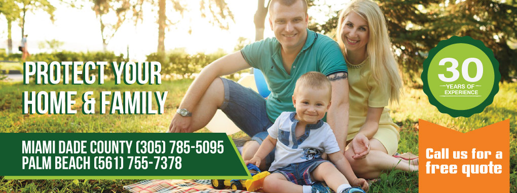 pest control south florida